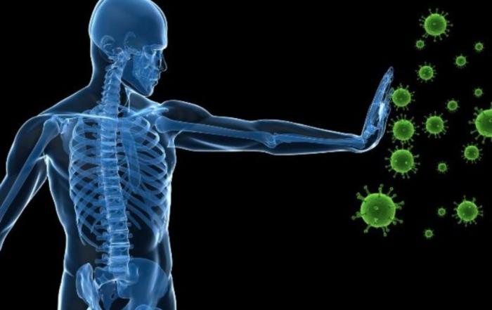 Coronoa virus header image